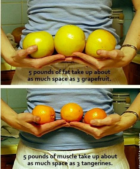 1 kg diferență de pierdere în greutate)