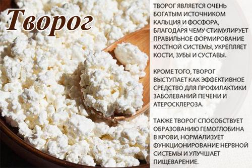 Caracteristici de proteine în brânză de vaci - Confecție