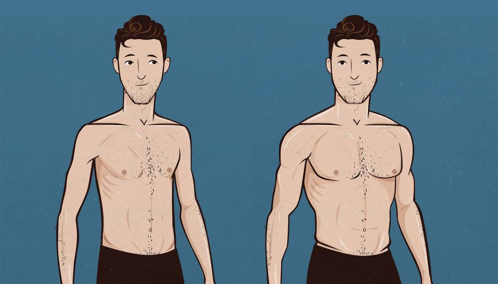 ectomorf de pierdere în greutate