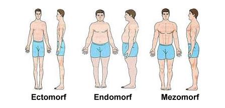 tipul subtire al corpului