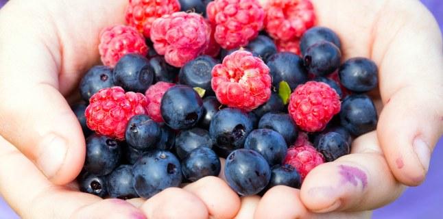 Fructele și pierderea în greutate - ce fructe au cele mai puține calorii? - GymBeam Blog