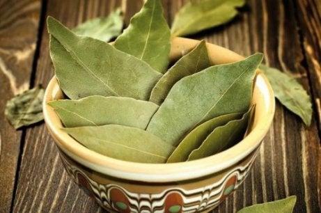 Celebrul capelin: beneficiile și răul pentru corpul uman - Ceai