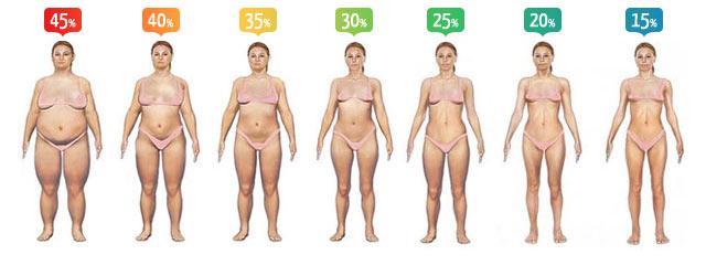 arzător de grăsimi zajecia peste 40 de povești despre pierderea în greutate