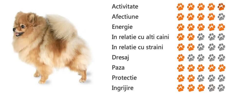 Controlul greutății | sudstil.ro