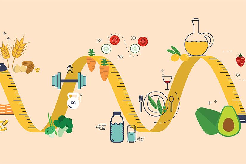 creșterea ratei metabolice de pierdere în greutate)