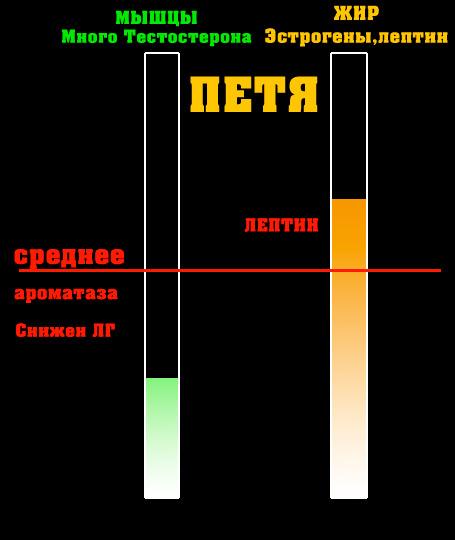 sondaj privind pierderea de grăsime)