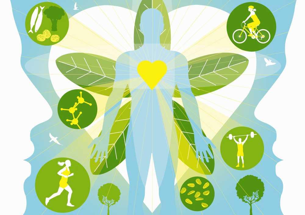 creșterea ratei metabolice de pierdere în greutate cel mai bun supliment pentru pierderea în greutate din lume
