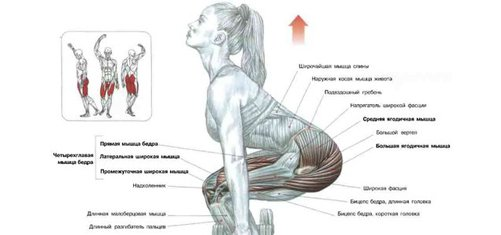 cum să elimini excesul de grăsime din corp