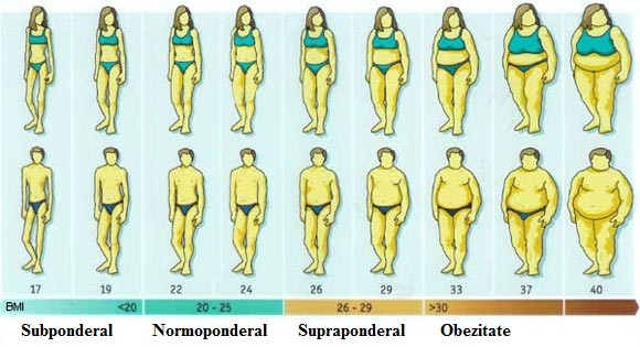 cum să pierzi grăsimea corporală cât mai repede