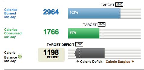 exemple de obiective de pierdere în greutate)