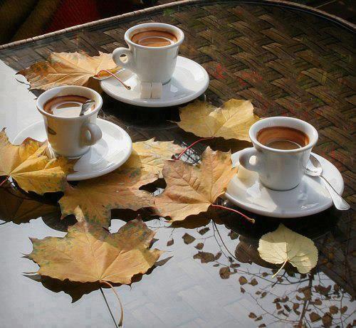 cafeaua gastronomică neagră pierde în greutate)