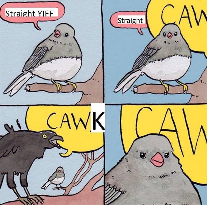 când pierd meme
