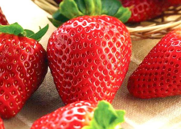 fructe de pădure bune pentru pierderea de grăsime