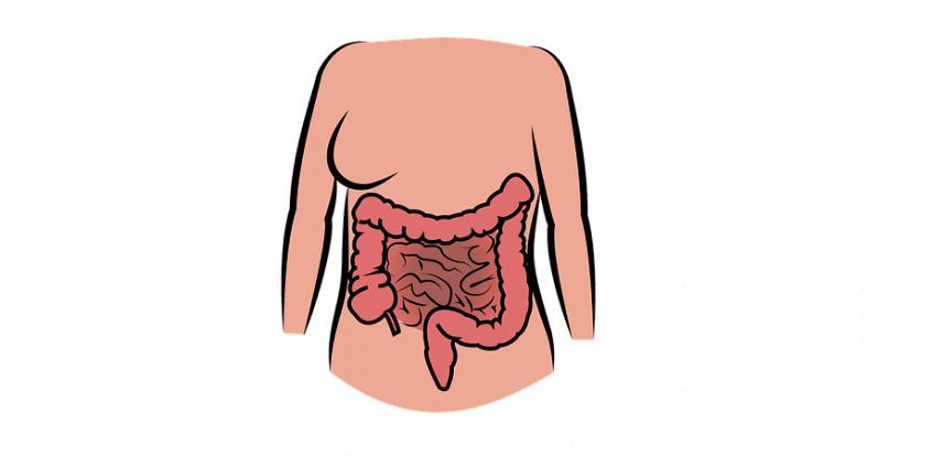 pierderea în greutate din intestinul scurger
