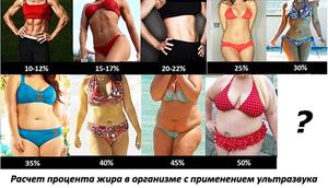 Calculator de grăsime corporală Obțineți un procent instantaneu al grăsimii corporale