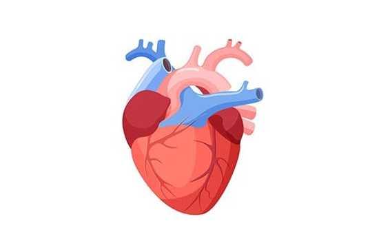 insuficiență de organ pierdere în greutate