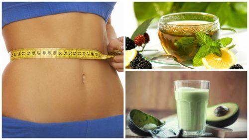 Mtv pierderea în greutate a vieții adevărate