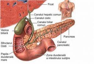 reflux biliar și pierderea în greutate)