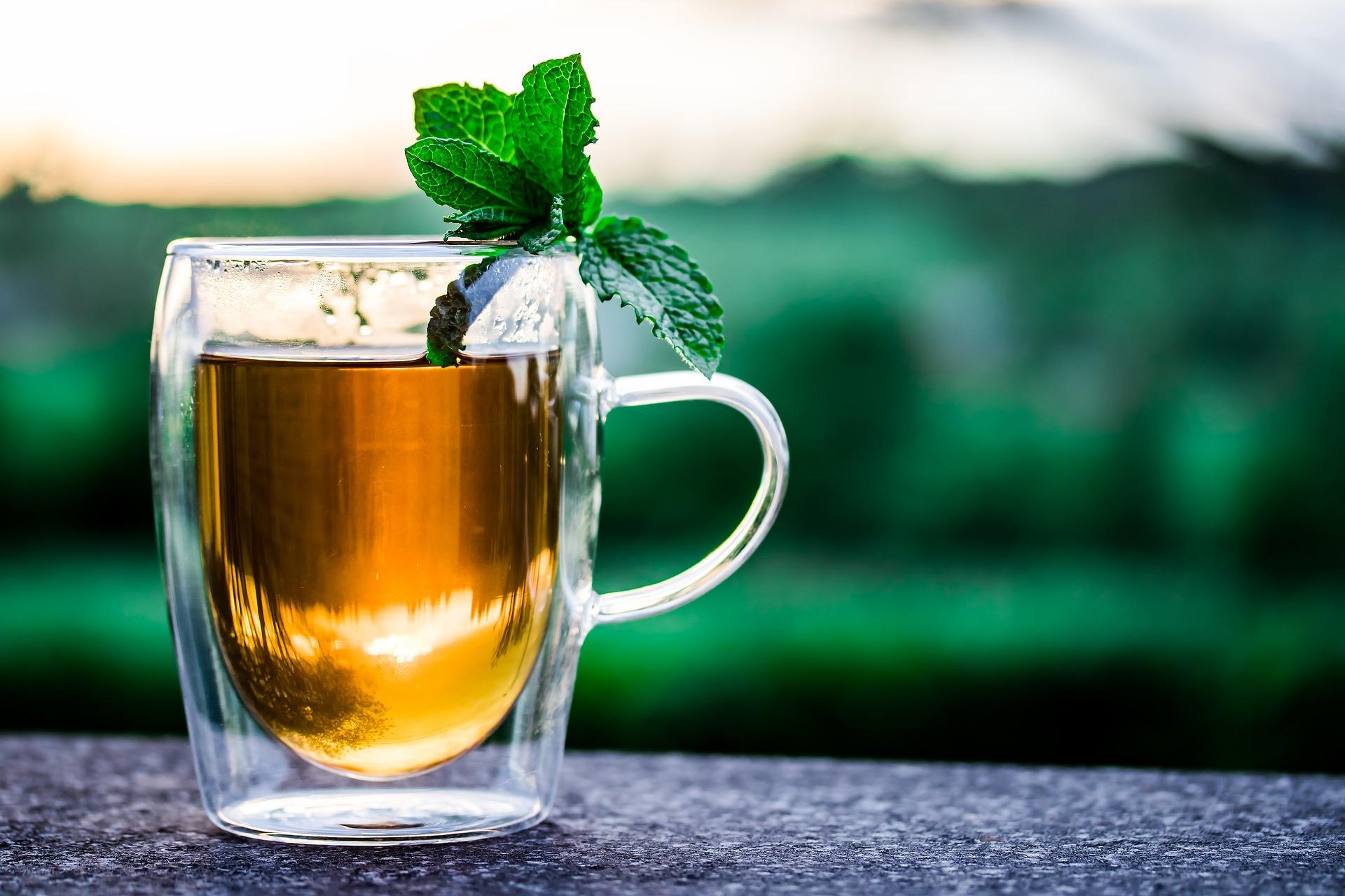 metabolismul de ardere a grăsimilor care stimulează băutura