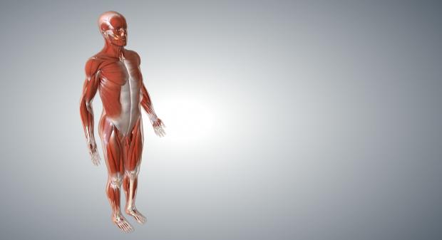 congelare subțire a corpului