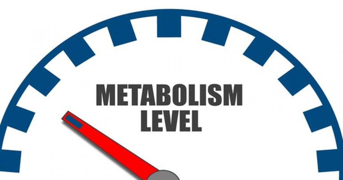 Pierderea în greutate a alunga metabolismul de grăsime