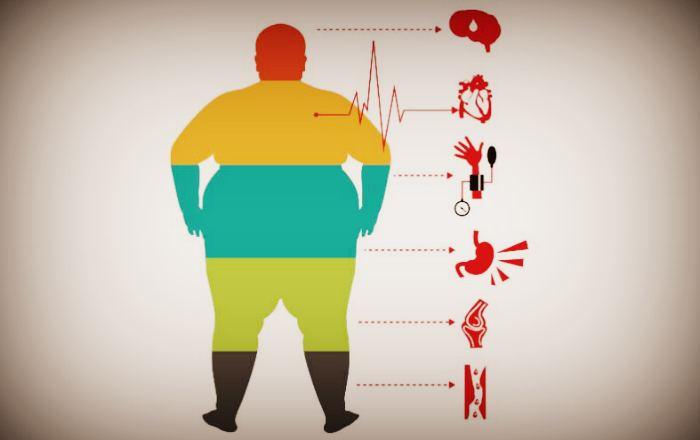 Studiul de sine feminin care arde grăsime scădere în greutate b6